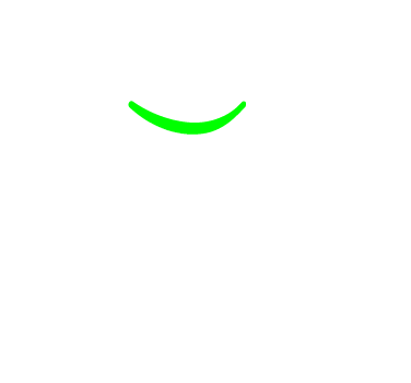 meet-the-cactus-crew.png